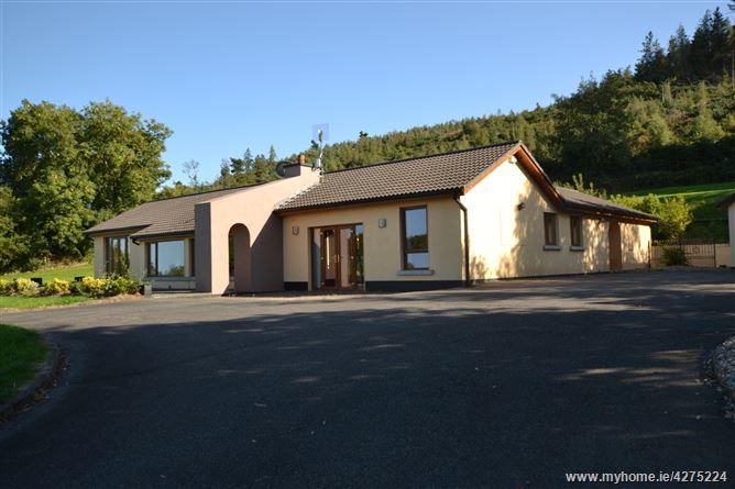 Main image for 'Ashram', Kilcavan, Tara Hill, Wexford