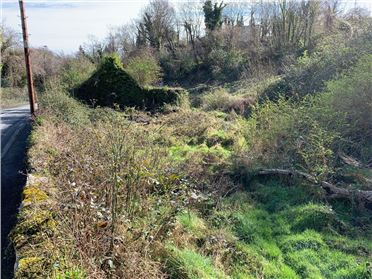 Main image of Lands at Swiss Cottage 1.013 acres, Enniskerry, Wicklow