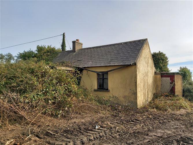 Main image for Clonmines, Wellingtonbridge, Wexford