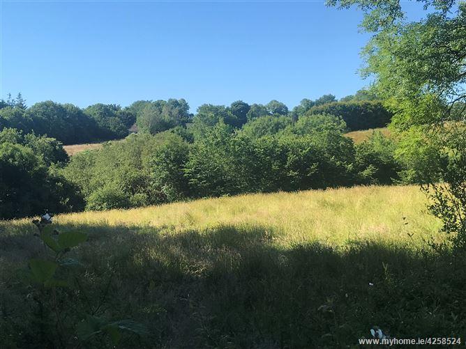 C. 1.1 Acre Site, Killurin, Wexford