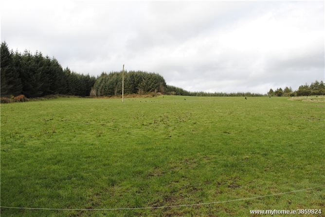 Photo of Lands at Graigue, Aglish, Cappoquin, Co. Waterford