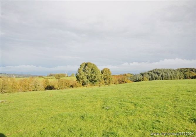 Land c. 30 acres Kilbaylet Upper, Donard, Wicklow