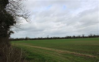 C. 6.02 Hectares (c. 14.8 Acres) Mabestown, The Ward, Meath