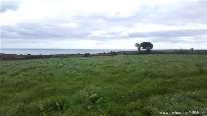 Ballinaharda, Old Parish, Dungarvan, Waterford