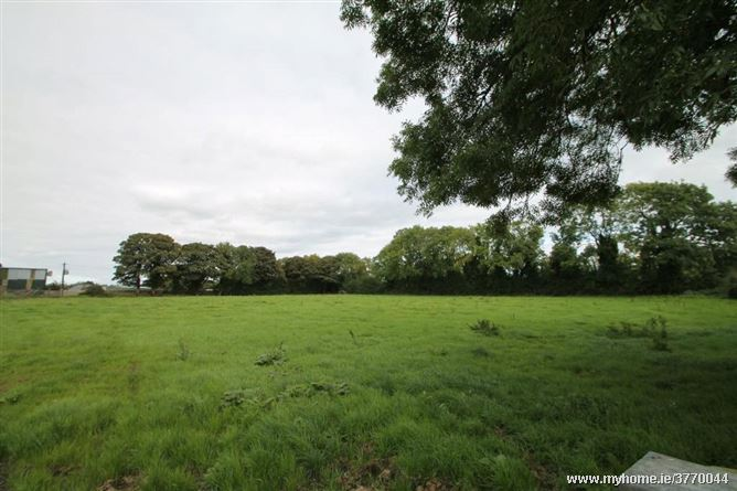 Land At Old Mill C.0.89 (2.2 Acres), Old Mill, Kill, Co Kildare