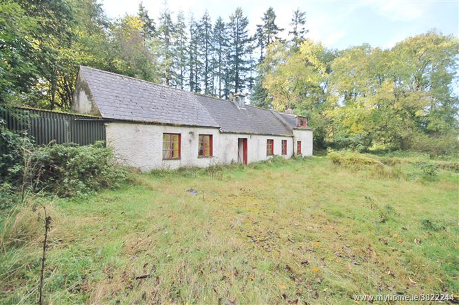 """The Hollow"" Cottage on 45.6 Acres, Kilbaylet Upper, Donard, Wicklow"