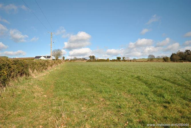 Ballintlea, Gorey, Wexford