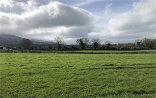 Circa 8 Acres at Kildanogue, Ardfinnan, Tipperary