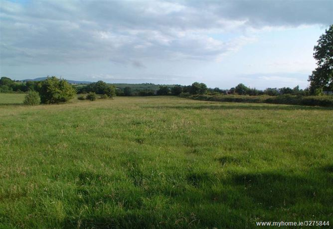 C.72 Acre Farm at Coolquil, Killenaule, Tipperary