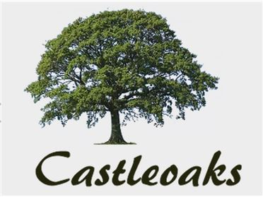 Photo of The Swift, Castle Oaks, Dublin Road, Carlow Town, Carlow