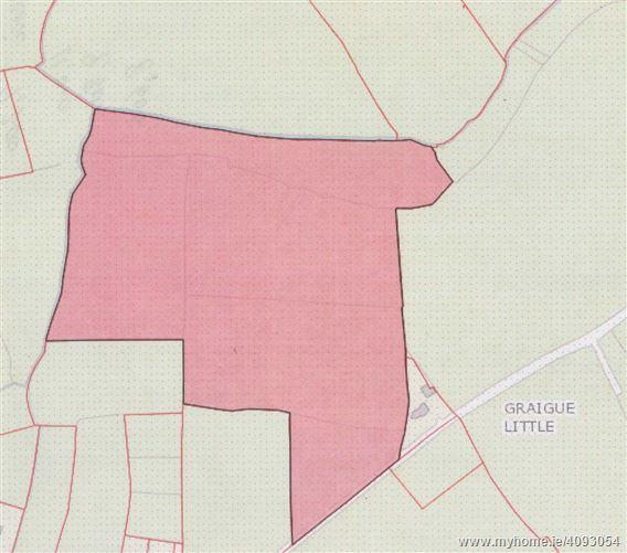 Graigue Little, Fethard, Wexford