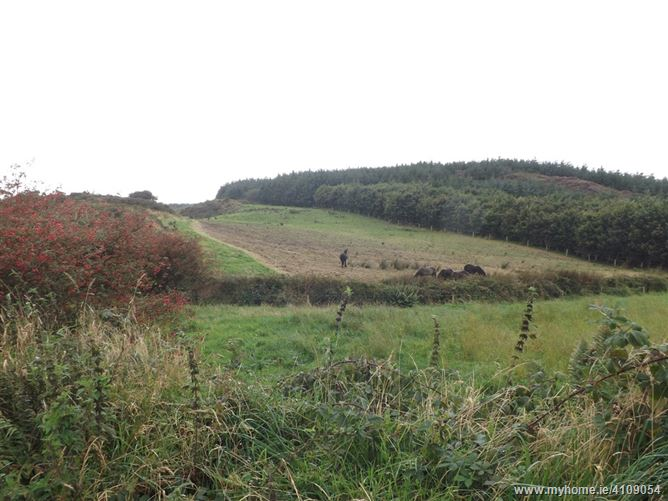 Main image for Knockmore, Drinagh,   West Cork