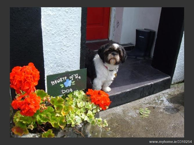 Main image for Annaghkeen Cottages, Ower.,Headford, Galway