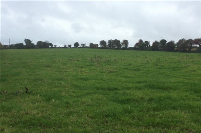 Main image for Lot 1, Connagh, Fethard, New Ross, Co. Wexford
