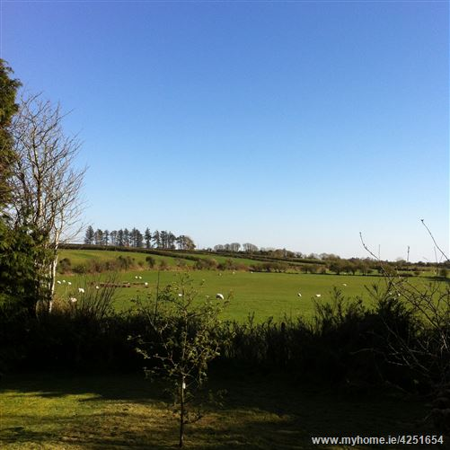 Monard, Mayo Abbey, Claremorris, Mayo