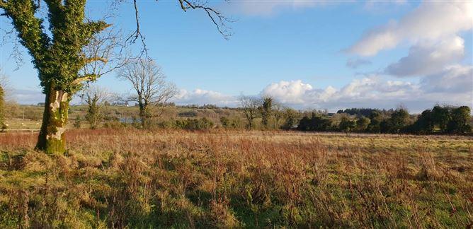Main image for 2.10ha / 5.20ac, Lehinch, Kilkerrin, Ballinasloe, Co. Galway