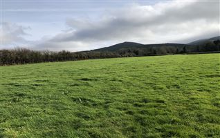 Circa 3.4 Acres at Kildanogue, Ardfinnan, Tipperary
