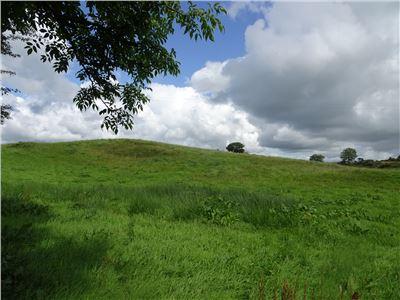 Ballycar, Ardnacrusha, Clare