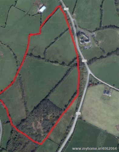 C. 31 Acres at Milltown, Gowran, Kilkenny