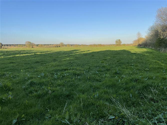 Main image for Approx. 6.45 acres on the Laois/Kildare Border, Monasterevin, Kildare