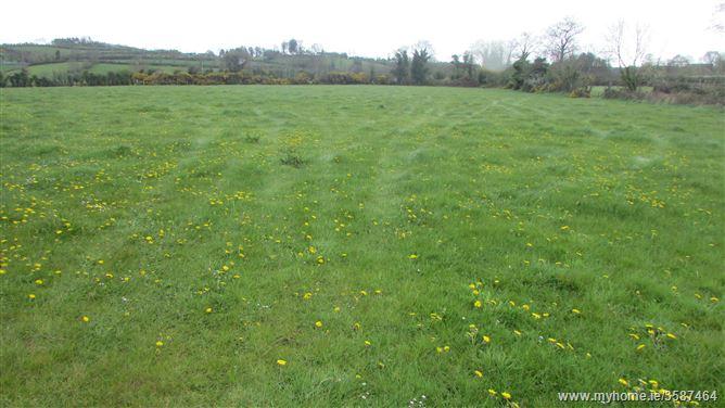 Corrinshigagh and Lattinalbany, Carrickmacross, Monaghan