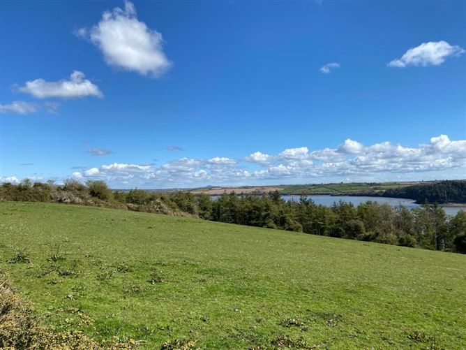 Main image for C. 2 Acres At Coolbunnia, Cheekpoint, Co. Waterford