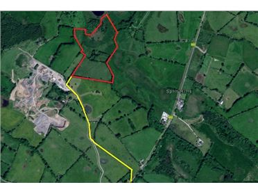 Main image of c. 18.83 Acres (c. 7.62 Hectares) at Newtown, Clonmellon, Westmeath