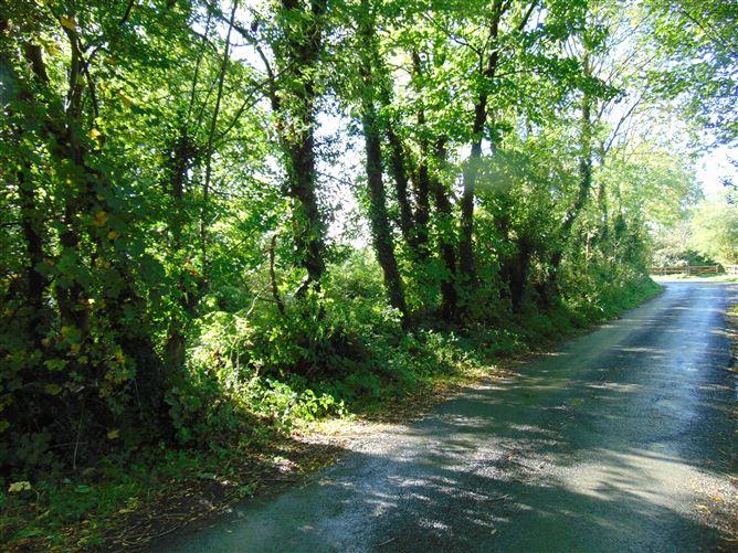 Main image for Cloonfadda, Killaloe, Clare