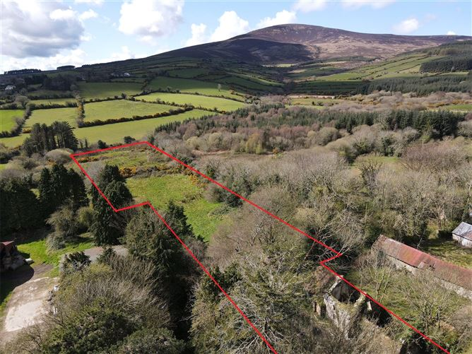 Main image for Derelict Cottage,Cullentragh,Kiltealy,Enniscorthy,Co. Wexford