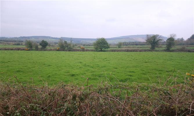 Main image for Ballynoulty, Kildorrery, Cork