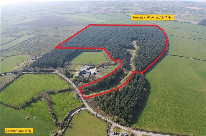 Main image for Forestry c. 61 Acres, Kilmuckridge, Wexford