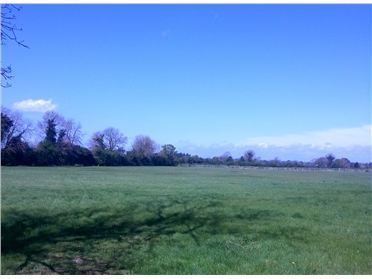Main image of Land at Coolfitch, Hazelhatch, Celbridge, Co. Kildare - Approx.3 acres
