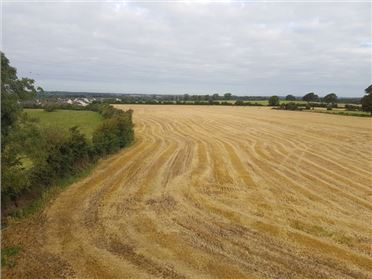 Main image of 24.5 Acres Bodenstown, Sallins, Kildare