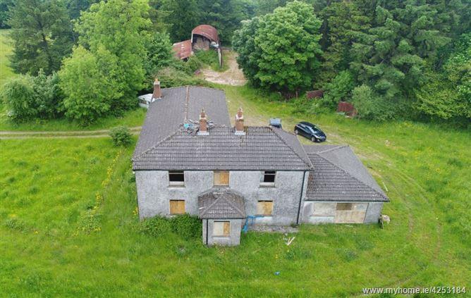 Dwelling on c. 24.85 Acres at Craanlusky, Bilboa, Carlow Town, Carlow