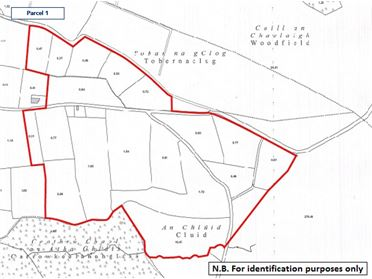 Photo of Land comprised within part of Folio GY29775F at Belwell, Dunmore, Co. Galway