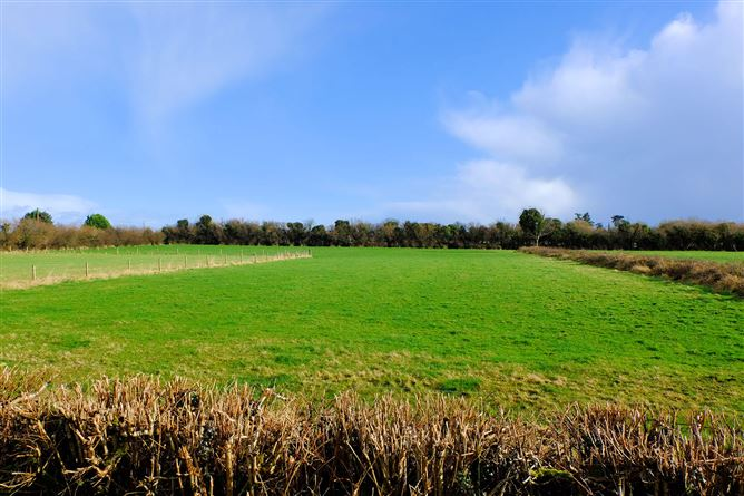 Main image for Ballintempan, Stonepark, Longford, Longford