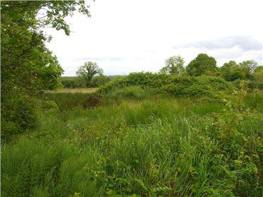 Main image of Site At Cloonagh, Drumlish, Co.Longford
