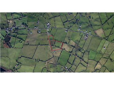 Image for Lands at Bunlahy, Granard, Longford