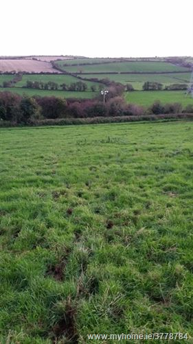 Ballintrim, Cloyne, Cork C.6 Acre Elevated Field