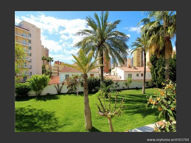 CalleBruselas, 03503, Benidorm, Spain