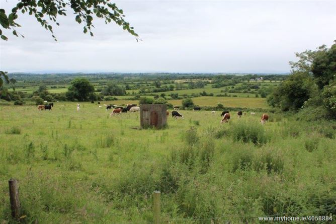 Knockroe, Caherconlish, Limerick