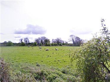 Photo of 3.5 Acres, Sylaun, Tuam, Co. Galway