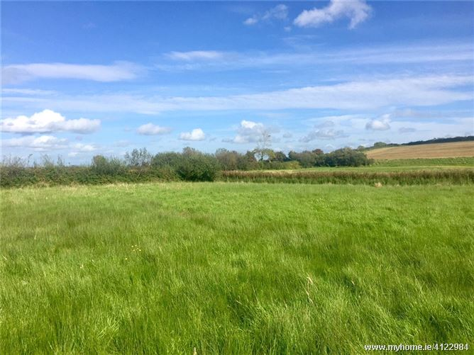 Photo of 7.31 Acres Of Land, Part Of Folio CE14091, Ballynacally, Ennis, Co Clare