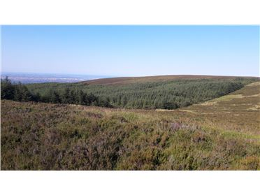 Photo of 345 acres, Kilakee Mountain, Rathfarnham, Dublin