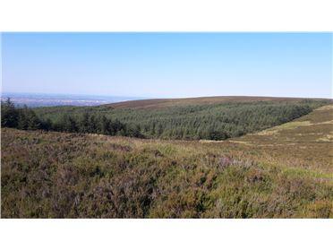 Main image of 345 acres, Kilakee Mountain, Rathfarnham, Dublin