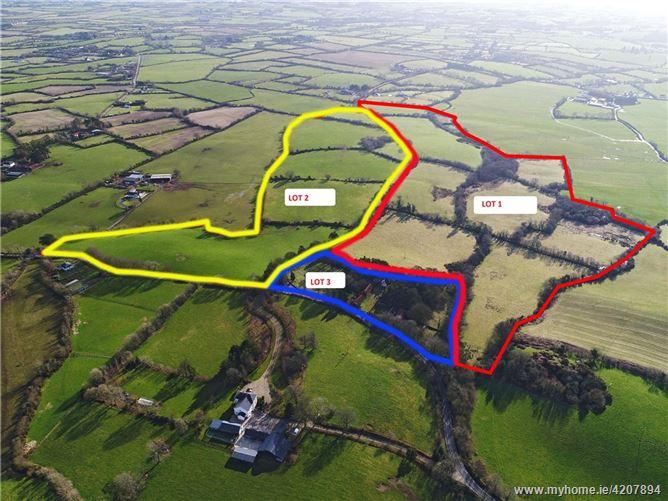 Agricultural Land, Knockanevin, Castle Ellis, Blackwater, Enniscorthy