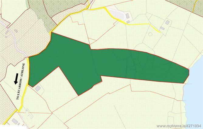 Rinnagan, Lecarrow, Roscommon
