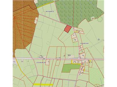 Main image for Lisanurlan, Longford, Longford