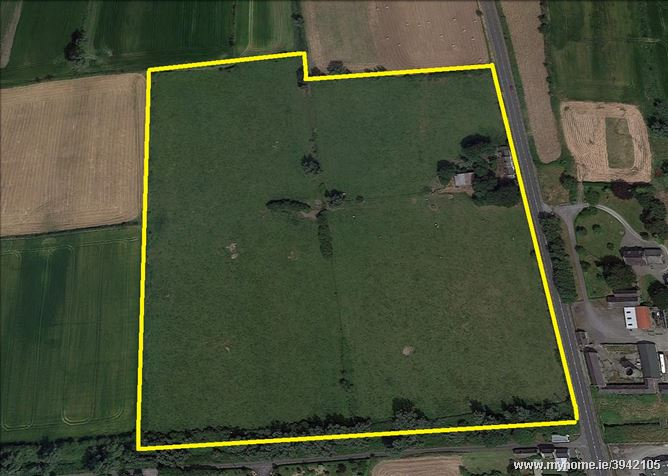 Main image of 17.29Acres and Dwelling at Mooretown , Dromiskin, Louth