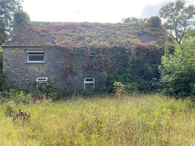 Main image for 40 acres Coolgrange, Clifden, Kilkenny